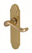 Savoy Everbrite Door Handle[[[[