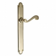 Victorian Door Handle on Long Backplate[[[[