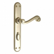 Georgian Lock Handles on Lock Plate[Georgian Handles on Bathroom Plate[[[