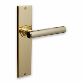 Modern Door Handle on Lockplate